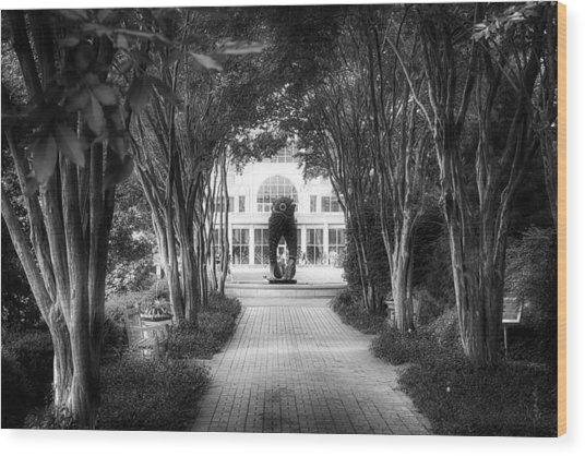 Atlanta Botanical Garden-black And White Wood Print
