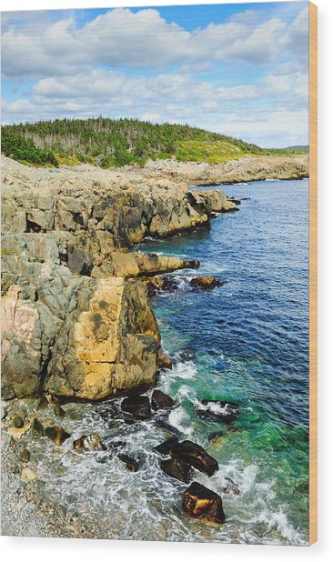 Atlantic Shoreline Wood Print