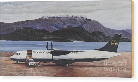 Atr 72 - Arctic Bay Wood Print