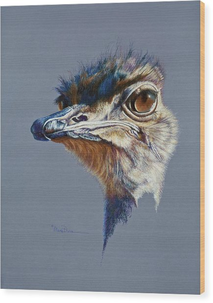 Attitude Aftican Ostrich Wood Print