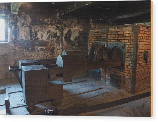 Auschwitz - 108 Wood Print