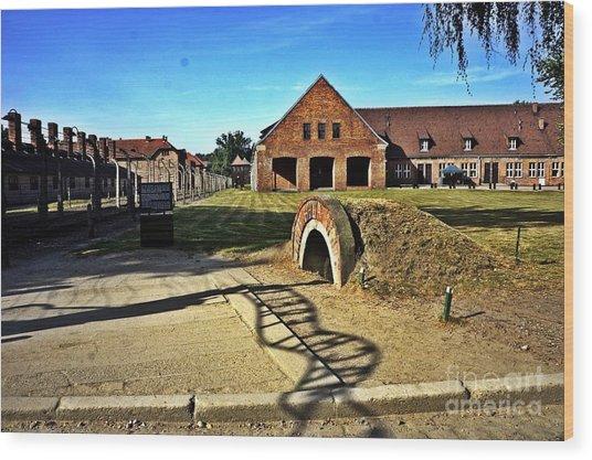 Auschwitz-5 Wood Print
