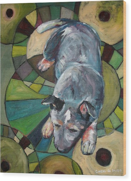 Australian Cattle Dog Nap Time Wood Print