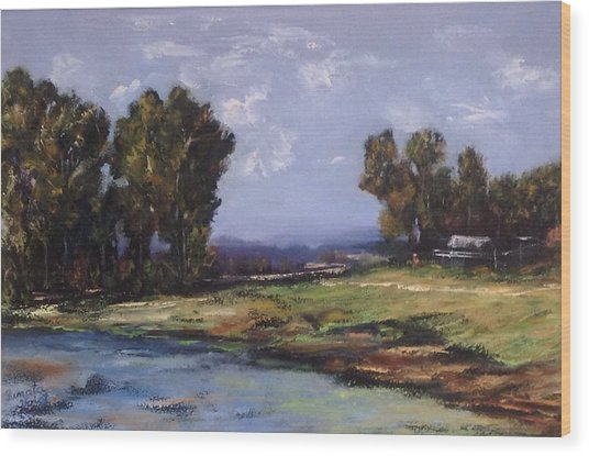 Australian Landscape By The Water  Wood Print