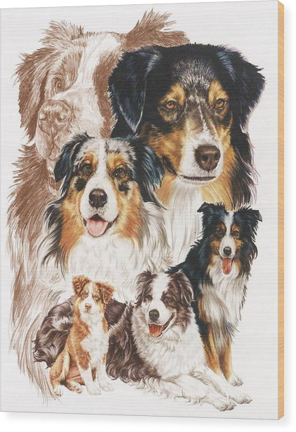 Wood Print featuring the drawing Australian Shepherd Revamp by Barbara Keith