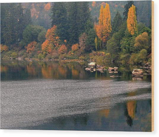Autumn Along The Umpqua Wood Print