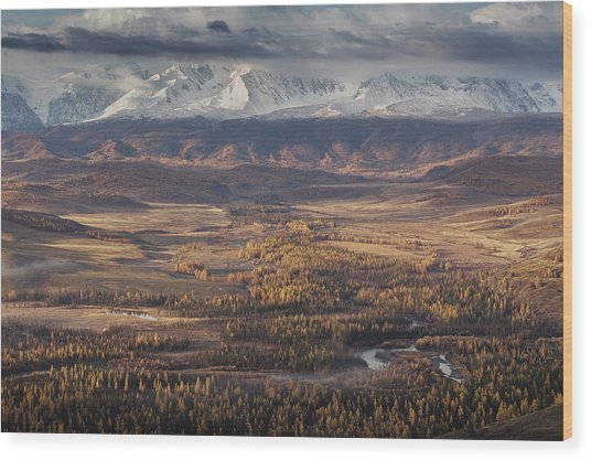 Autumn Altai Mountains Wood Print by Dmitry Kupratsevich