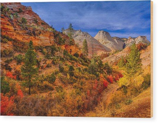 Autumn Arroyo Wood Print