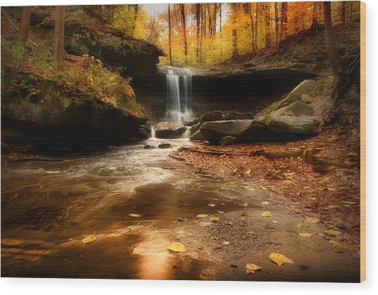 Autumn At Blue Hen Falls Wood Print