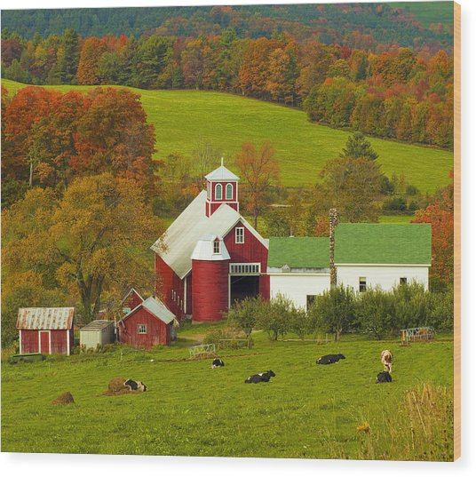 Autumn At Bogie Mountain Dairy Farm Wood Print