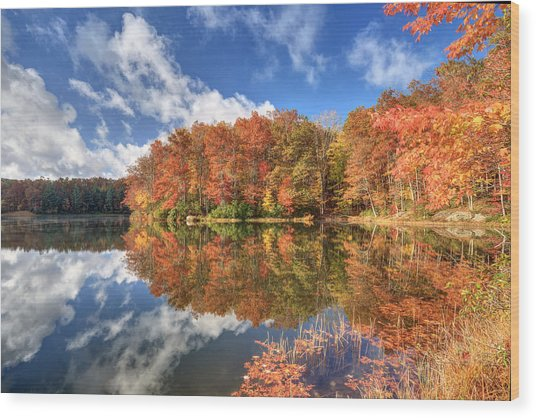 Autumn At Boley Lake Wood Print