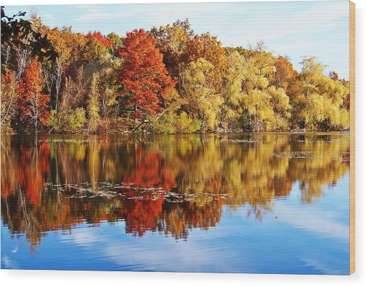 Autumn At Horn Pond Wood Print