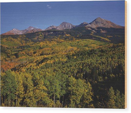 Autumn At Mt. Wilson Wood Print