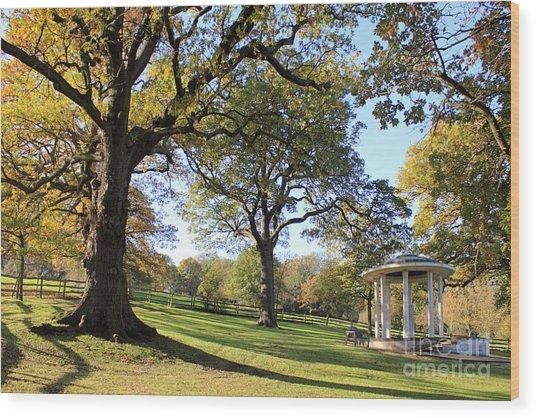 Autumn At Runnymede Uk Wood Print