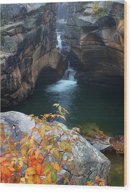 Autumn At The Grotto Wood Print