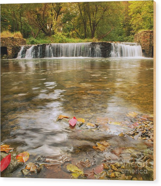 Autumn At Valley Creek Wood Print