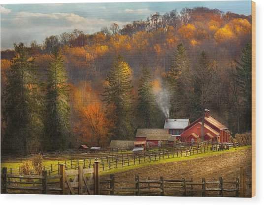 Autumn - Barn - The End Of A Season Wood Print