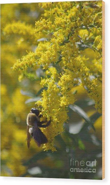 Autumn Bee Wood Print by Tannis  Baldwin
