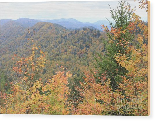 Autumn Bliss Smoky Mountains Wood Print