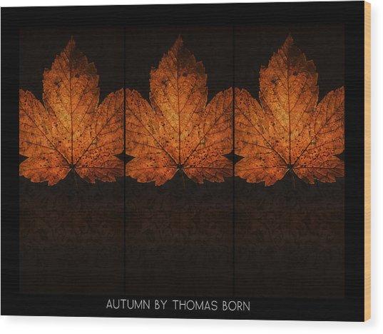 Autumn By Thomas Born Wood Print