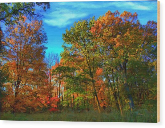 Autumn Clearing Wood Print