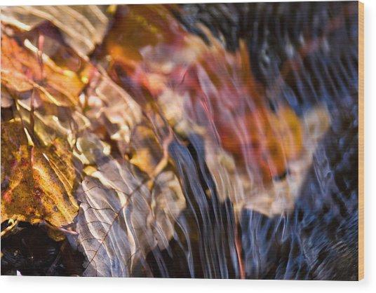 Autumn Color Beneath The Surface Wood Print