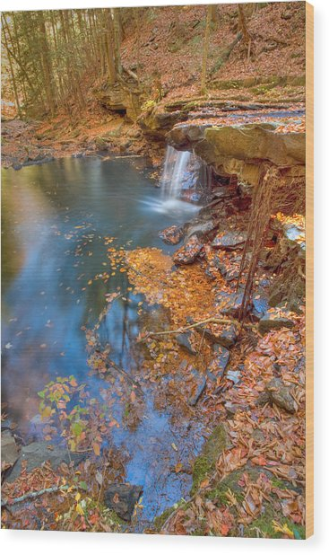 Autumn Color In Pond Wood Print