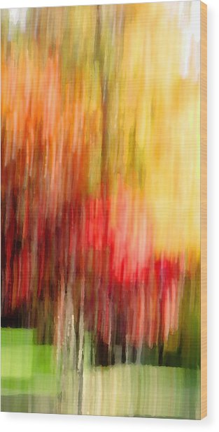 Autumn Colors In Abstract Wood Print
