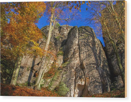 Autumn Colors In The Saxon Switzerland Wood Print