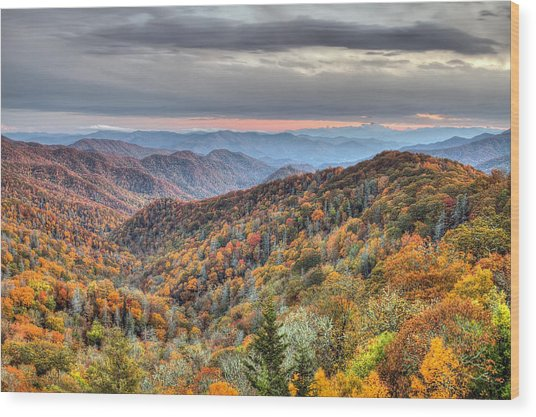 Autumn Colors On The Blue Ridge Parkway At Sunset Wood Print
