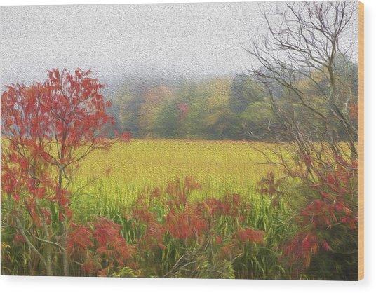 Autumn Cornfield II Wood Print by Tom Singleton