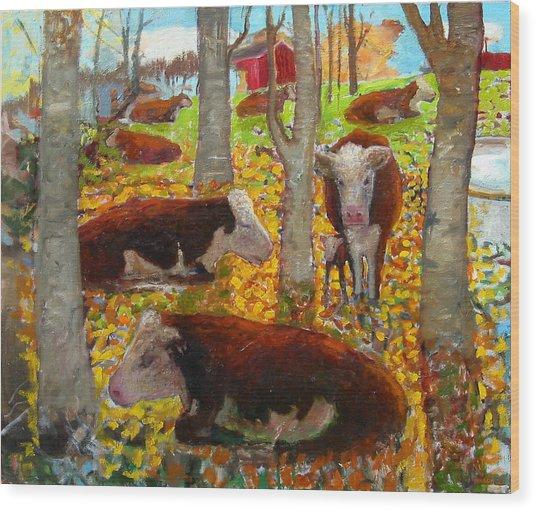 Autumn Cows Wood Print
