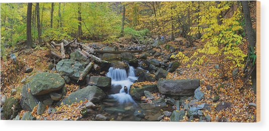 Autumn Creek Panorama With Yellow Maple Trees Wood Print