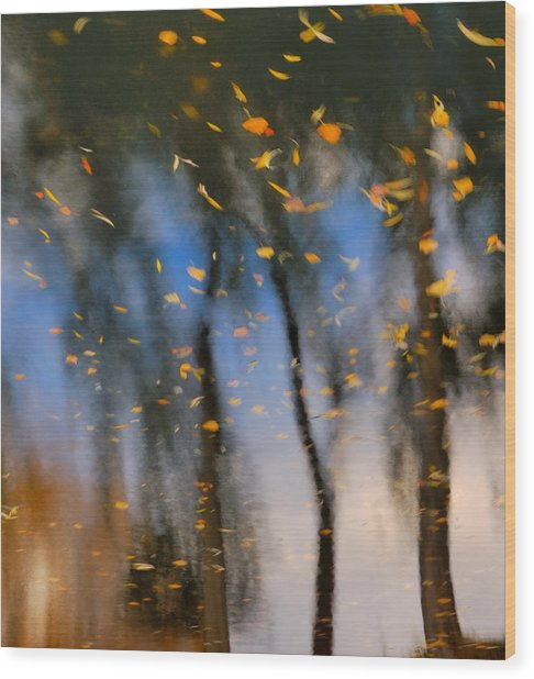 Autumn Daze - Abstract Reflection Wood Print