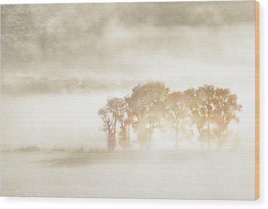 Autumn Dreams Wood Print by John Fan