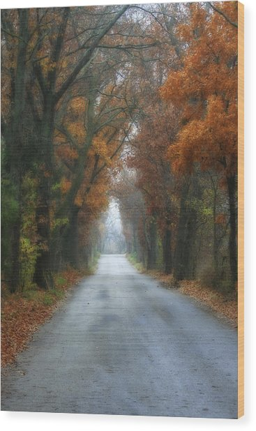 Autumn Drive Wood Print