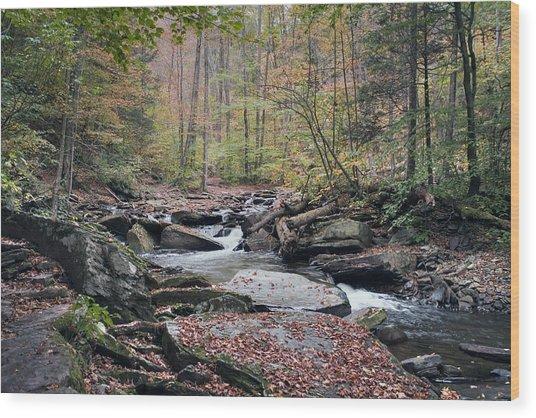 Autumn Drizzle On Kitchen Creek Wood Print