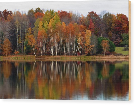 Autumn Evening On Rose Valley Lake Wood Print