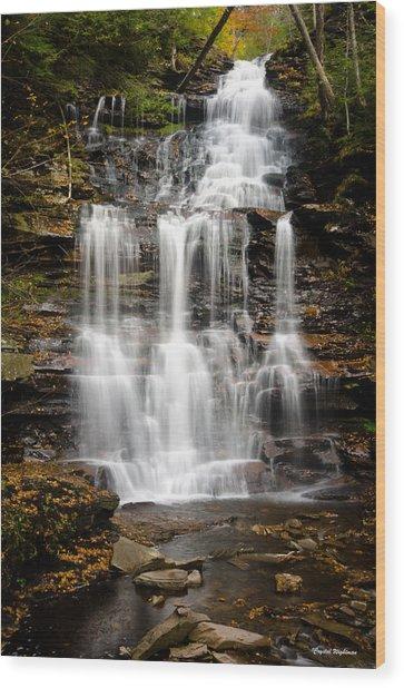 Waterfall At Ricketts Glen Wood Print
