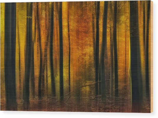Autumn Falls Wood Print