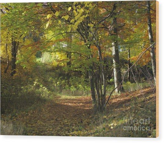 Autumn Feeling Wood Print by Lutz Baar