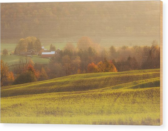 Autumn Fields Wood Print