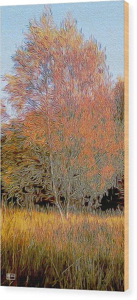 Autumn Fires Wood Print