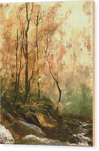 Autumn Forest Baltimore Maryland Wood Print