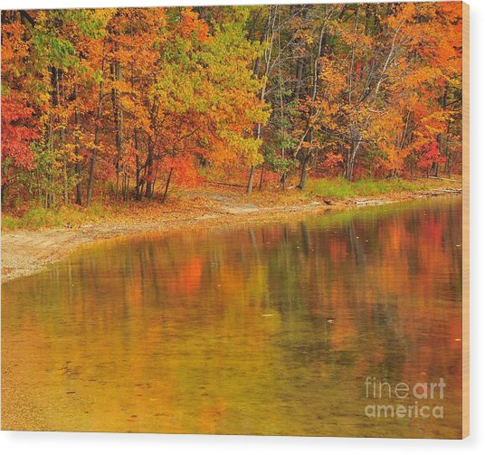 Autumn Forest Reflection Wood Print