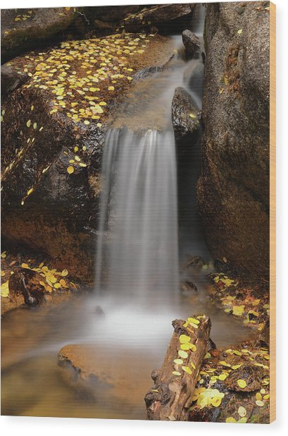 Autumn Gold And Waterfall Wood Print