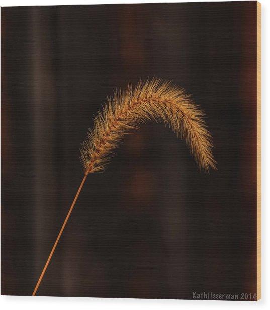 Autumn Grass Wood Print by Kathi Isserman