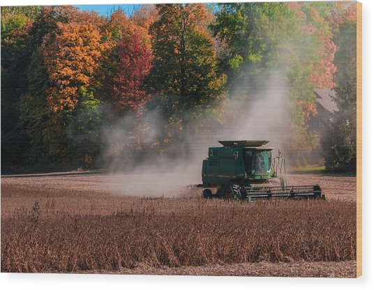 Autumn Harvest Wood Print by Gene Sherrill