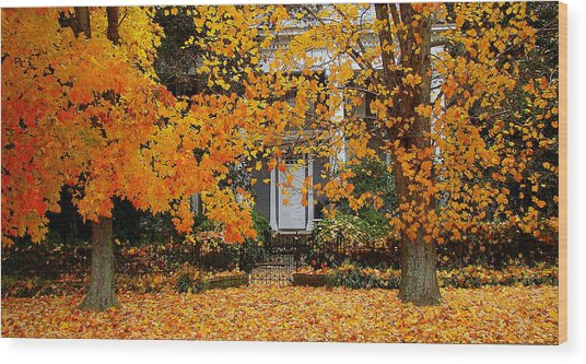 Autumn Homecoming Wood Print