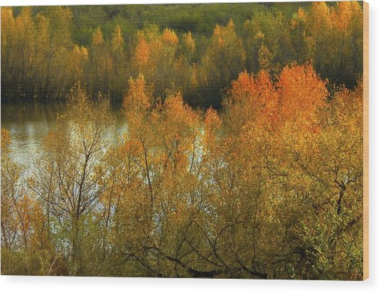 Autumn Ignites Wood Print